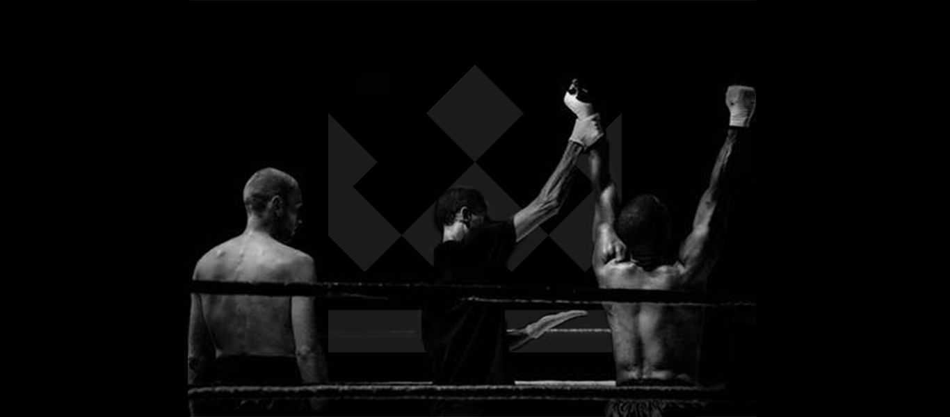 Website_SlideshowImages_Boxer